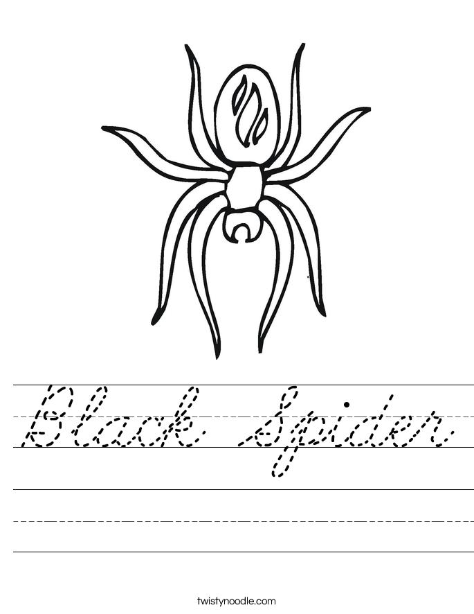 Black Spider Worksheet