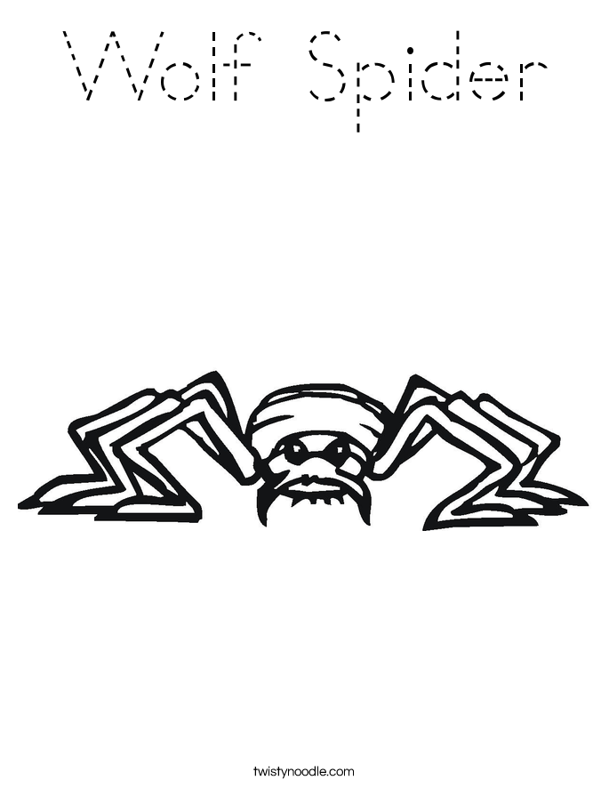 Wolf Spider Coloring Page