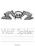 Wolf Spider Handwriting Sheet
