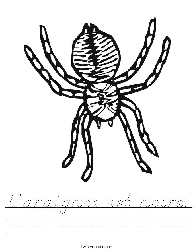 L'araignee est noire. Worksheet
