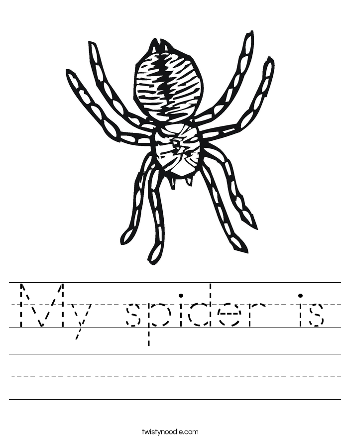 My spider is Worksheet