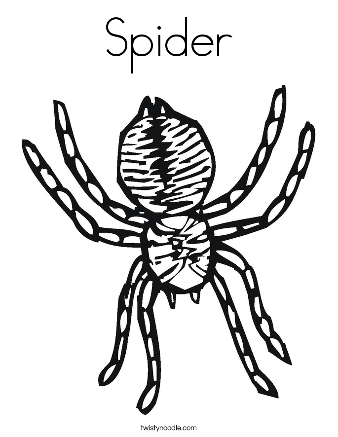Spider coloring pages twisty noodle coloring pages for halloween spiders Halloween Spider Coloring Pages big spider coloring pages