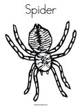 SpiderColoring Page