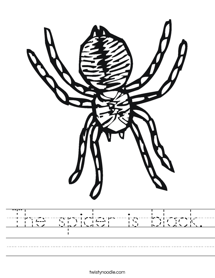 The spider is black. Worksheet