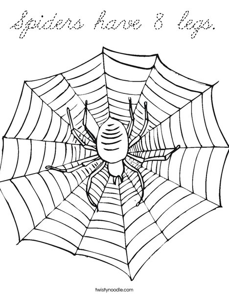 Spider with Web Coloring Page