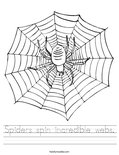 Spiders spin incredible webs. Worksheet