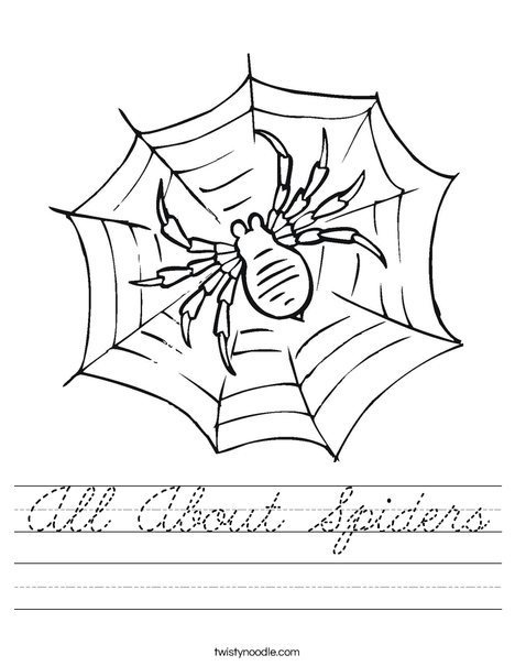 Spider in Web Worksheet