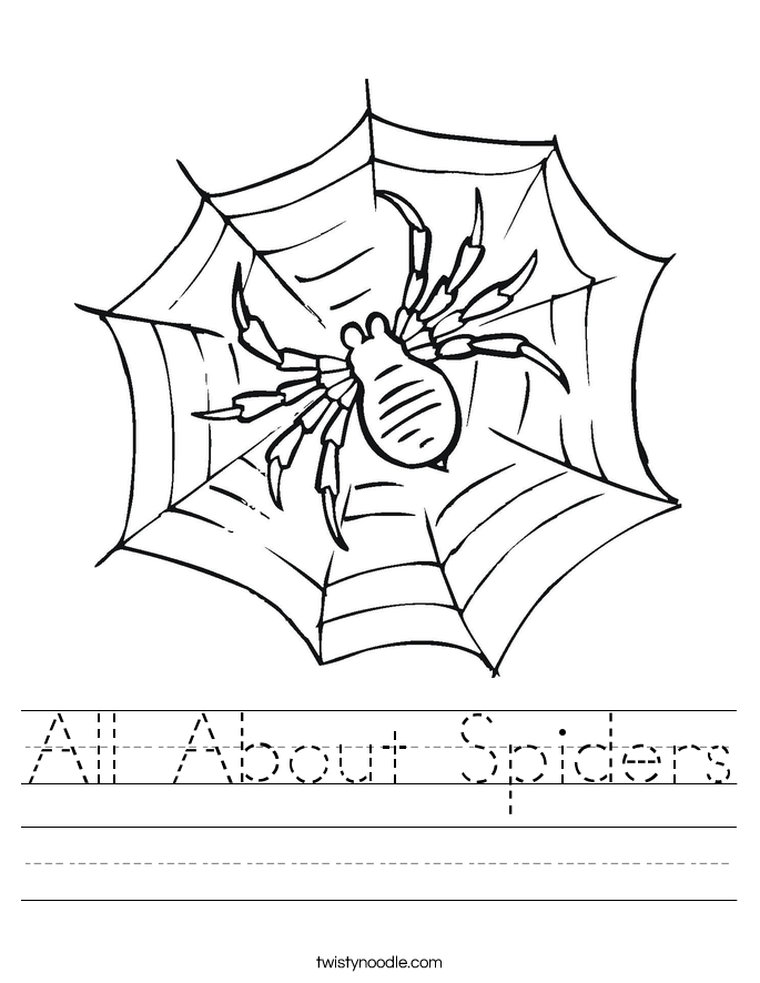 All About Spiders Worksheet