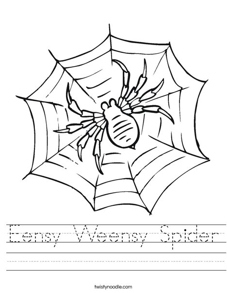 Spider in Web Worksheet