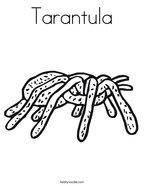 Tarantula Coloring Page