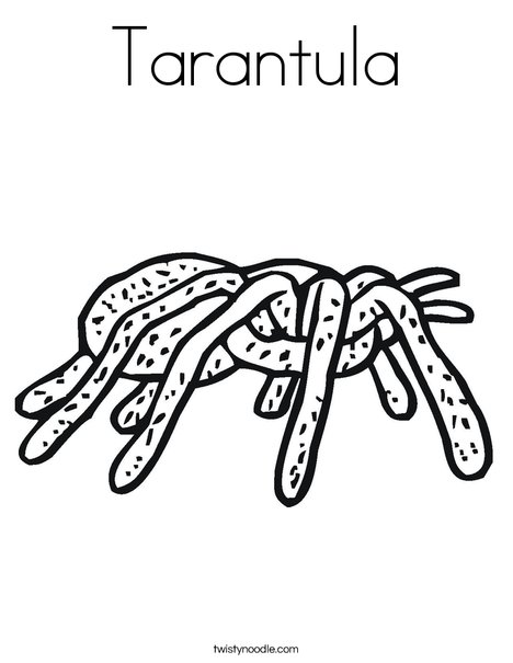 coloring pages tarantula - photo#33