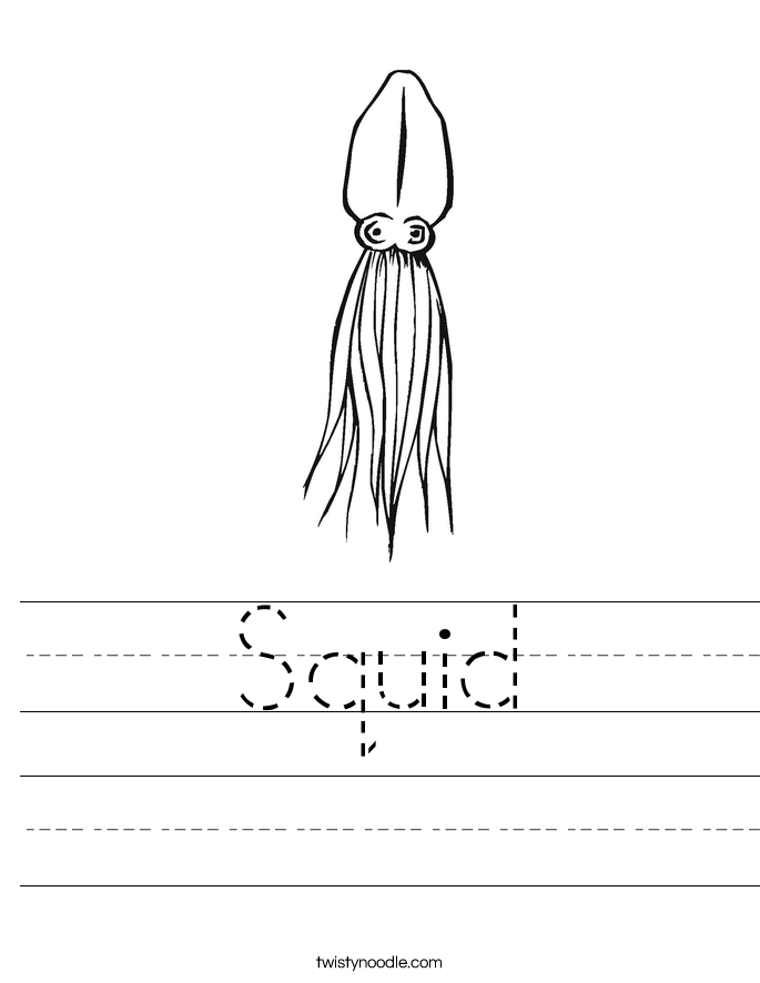 Squid Worksheet