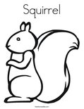 SquirrelColoring Page