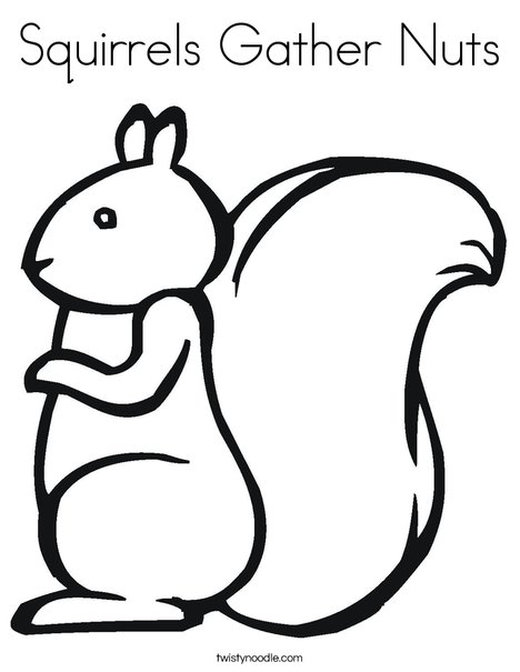 Squirrel2 Coloring Page