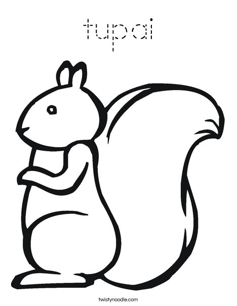 Squirrel2 Coloring Page