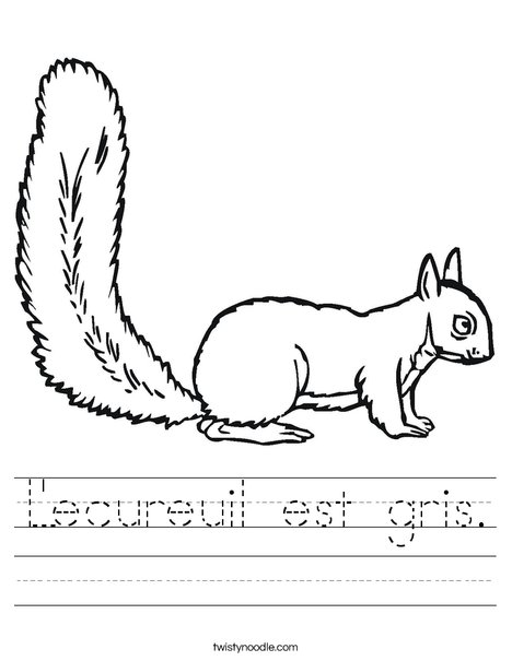 Squirrel Worksheet