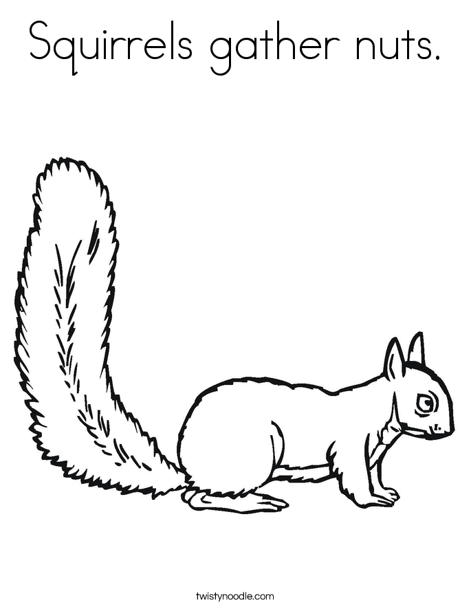 Squirrels gather nuts. Coloring Page