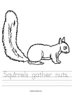 Squirrels gather nuts Handwriting Sheet