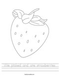 We picked and ate strawberries Worksheet