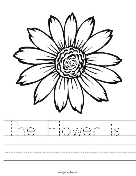 Sunflower Worksheet