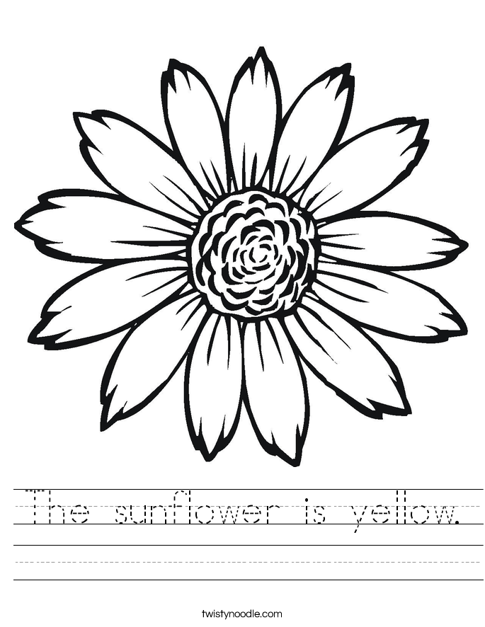 The sunflower is yellow. Worksheet