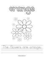 The flowers are orange Handwriting Sheet