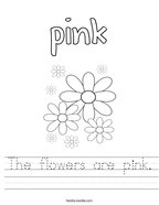 The flowers are pink Handwriting Sheet