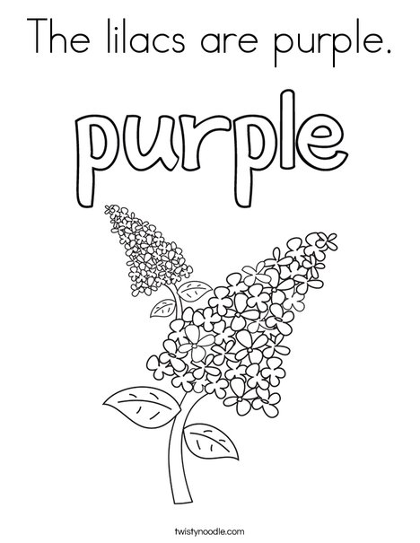 The lilacs are purple. Coloring Page