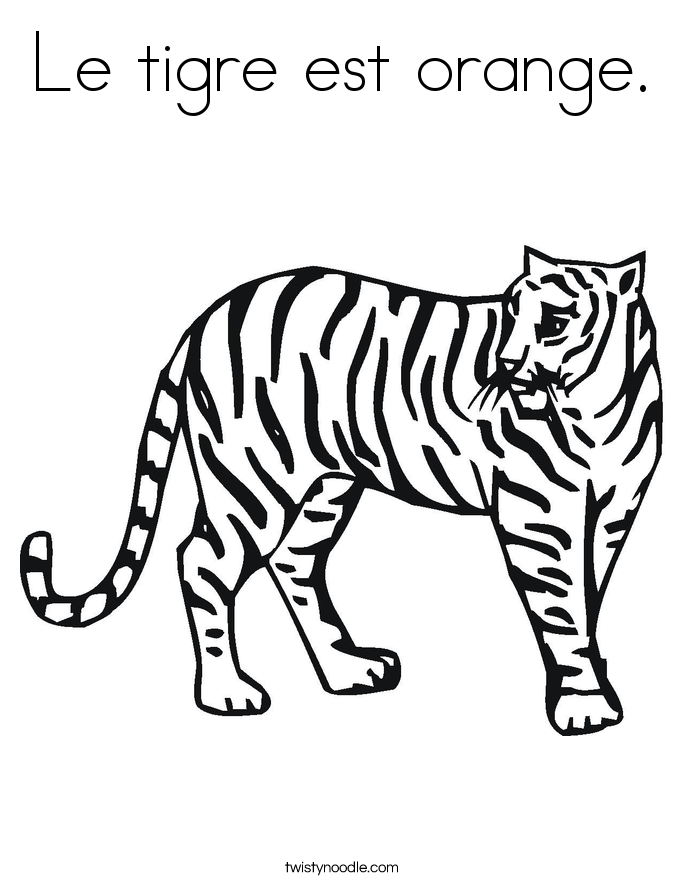 Le tigre est orange. Coloring Page