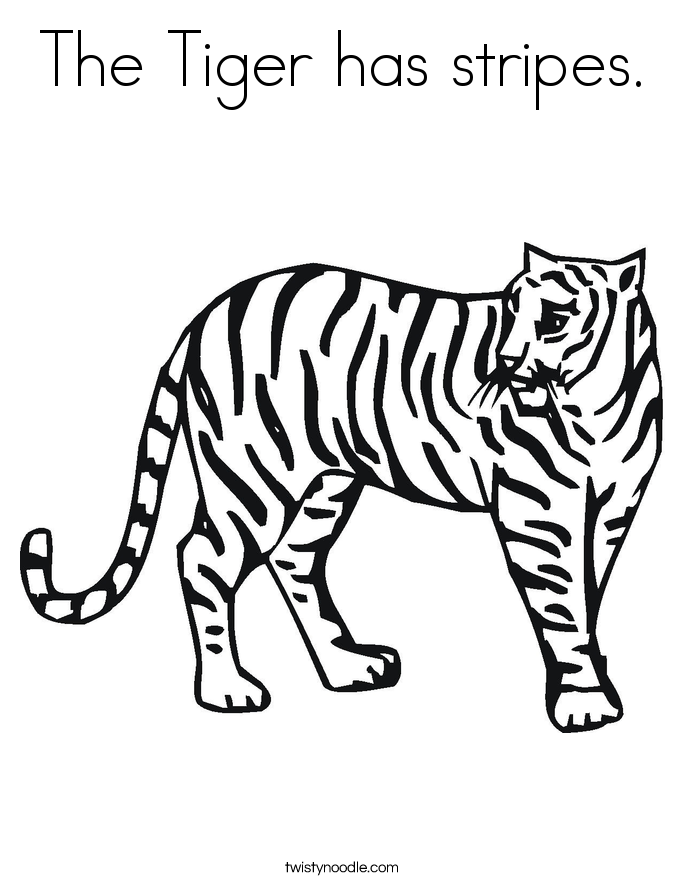 The Tiger has stripes. Coloring Page