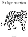 The Tiger has stripes.Coloring Page