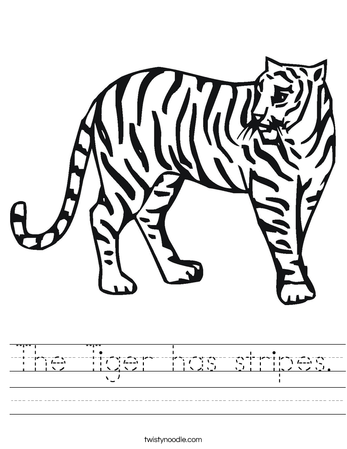 The Tiger has stripes. Worksheet