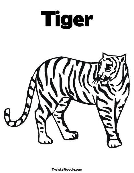 Tiger outline coloring page wallpapersZoo Colouring Pages
