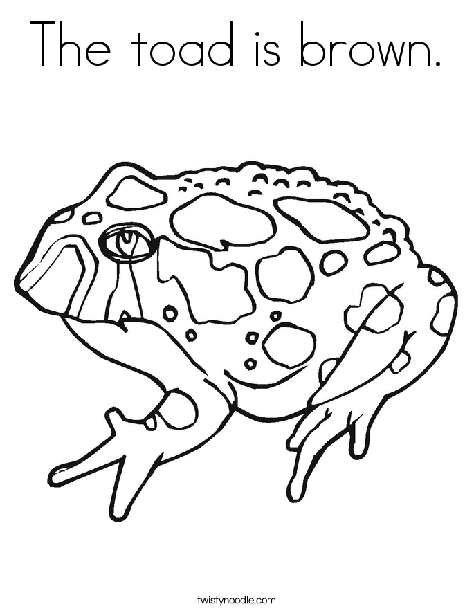 The toad is brown. Coloring Page