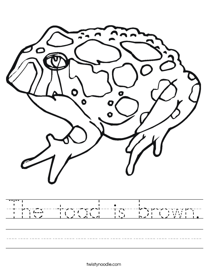 The toad is brown. Worksheet