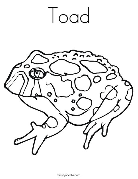 Toad Coloring Page Twisty Noodle