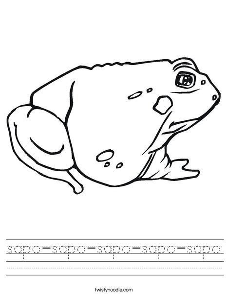 Toad Worksheet