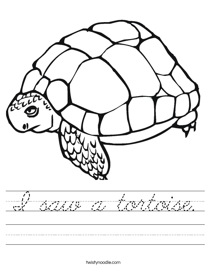 I saw a tortoise. Worksheet