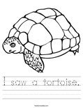 I saw a tortoise. Worksheet
