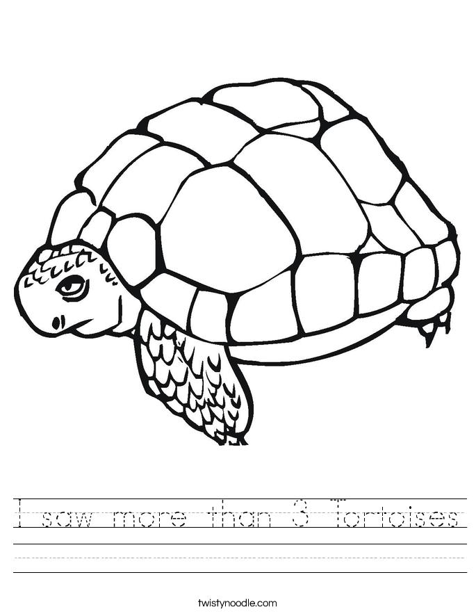 I saw more than 3 Tortoises Worksheet