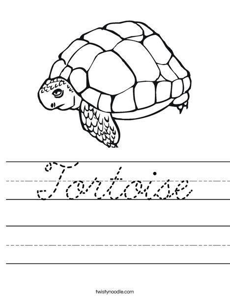 Tortoise Worksheet