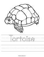 Tortoise Handwriting Sheet