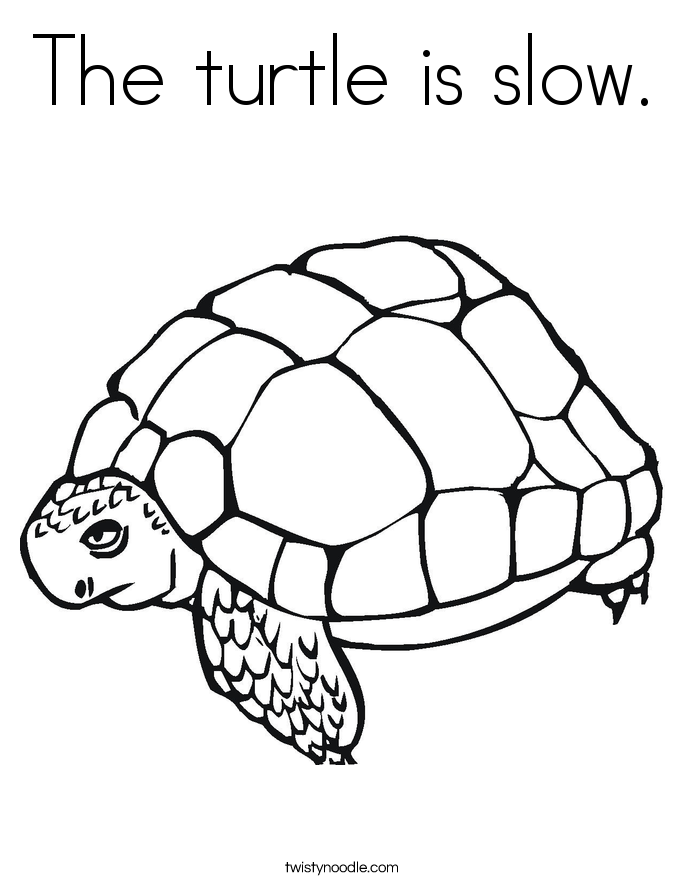 The turtle is slow. Coloring Page