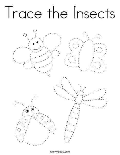 Trace the Insects Coloring Page