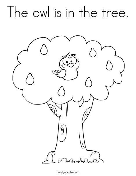 The Owl Is In The Tree Coloring Page Twisty Noodle