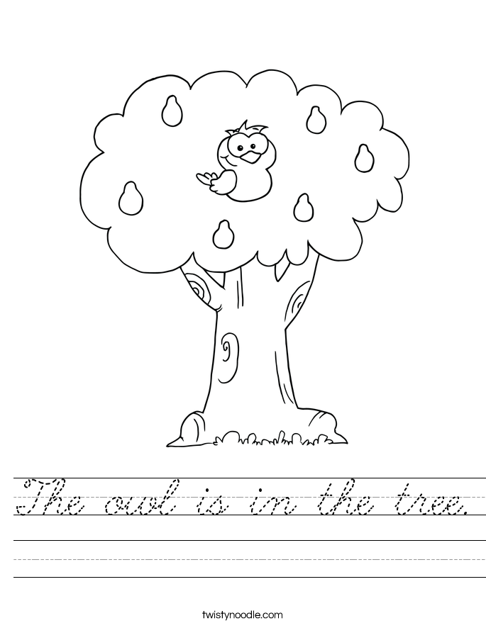 The owl is in the tree. Worksheet