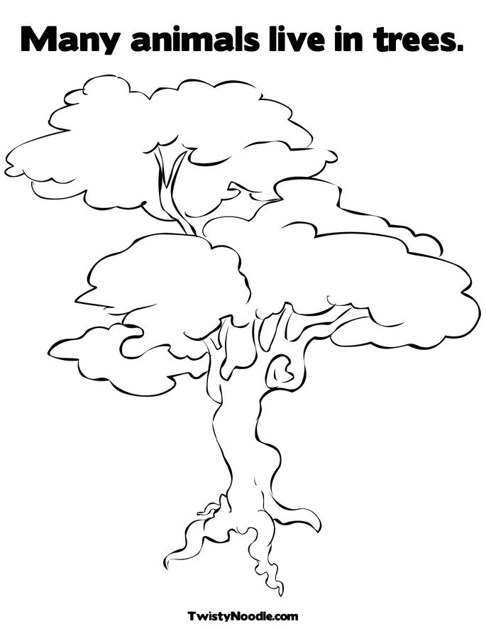 Free Coloring Pages Of White Oak Oak Tree Coloring Page