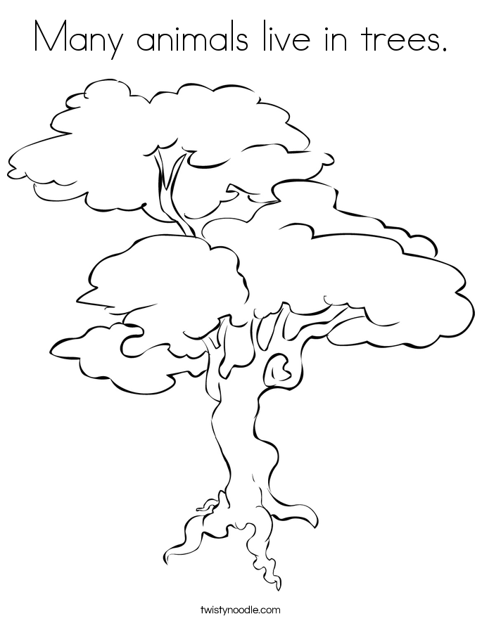 Many animals live in trees. Coloring Page