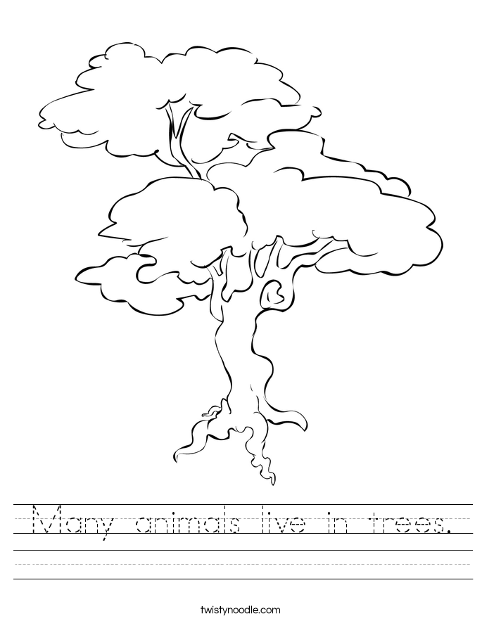Many animals live in trees. Worksheet