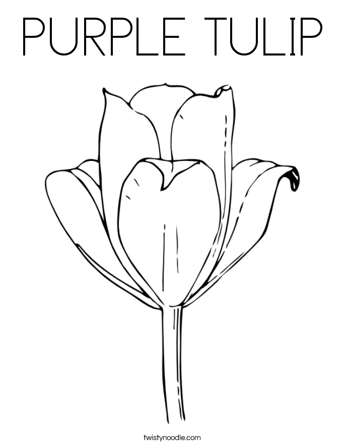 PURPLE TULIP Coloring Page